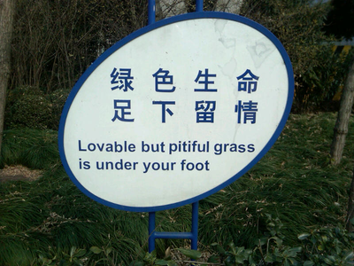 pitiful_grass